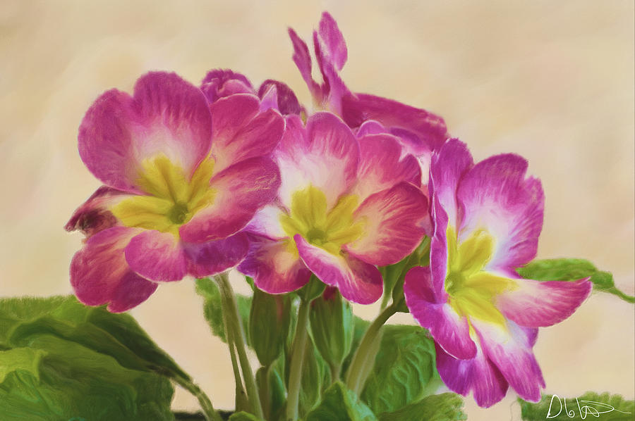 Landscape Photograph - Floral Oil Painting by Garvin Hunter