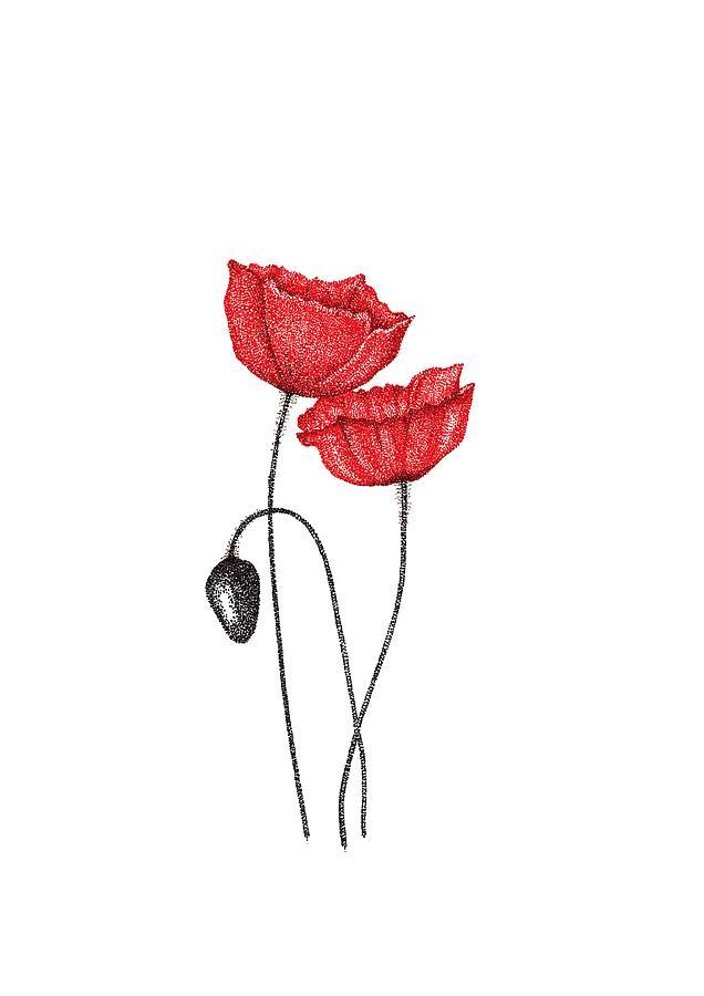 Floral Wall Art, Poppy Wall Art Print, Flower Art Print Home Decor ...