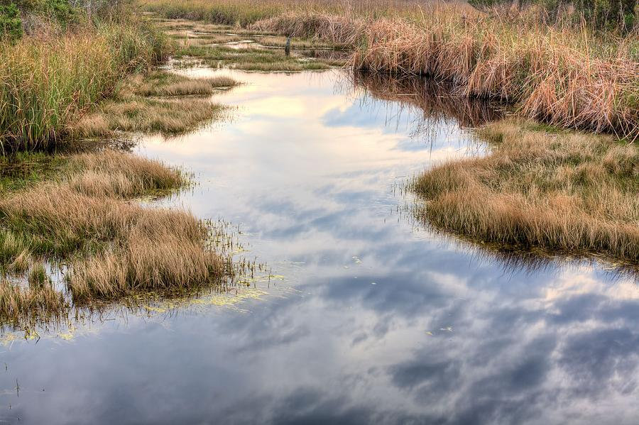 Florida Wetlands Photograph - Flordia Wetlands by JC Findley