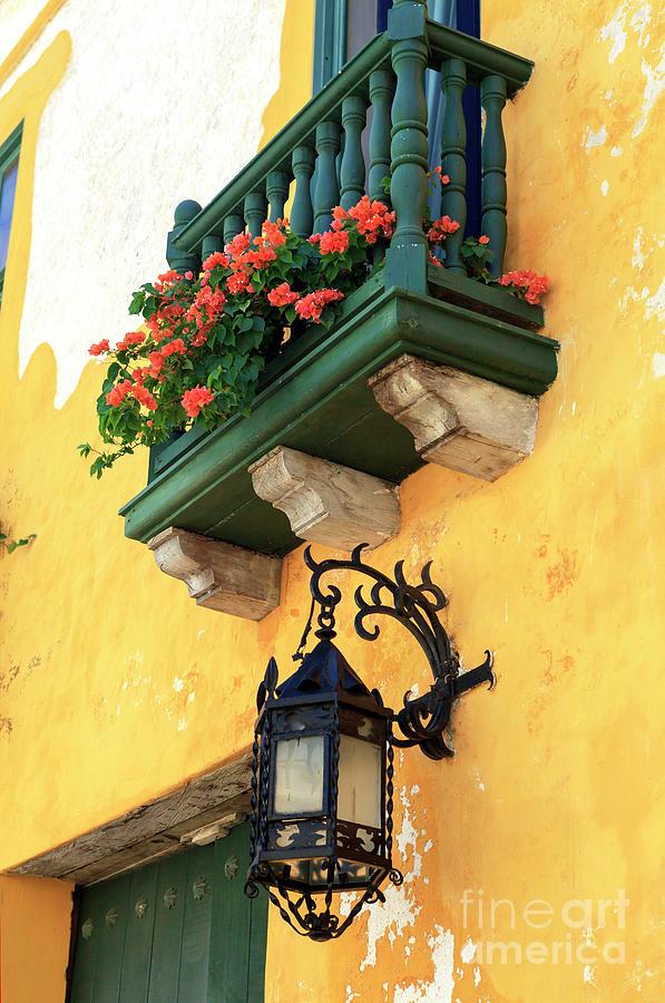 Flowers Photograph - Flores Rojas En Cartagena by John Rizzuto