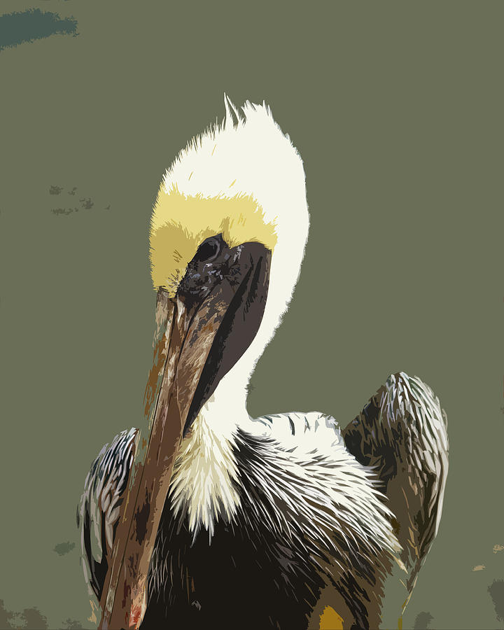Pelican Painting - Florida Brown Pelican by Allan  Hughes