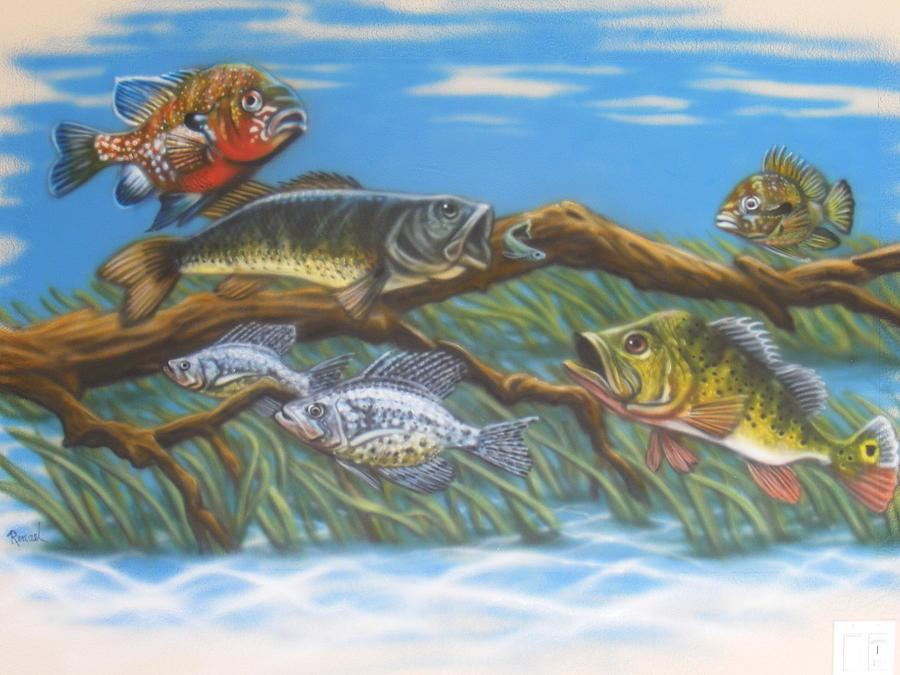 Florida freshwater fish painting by dan remmel for South florida freshwater fish