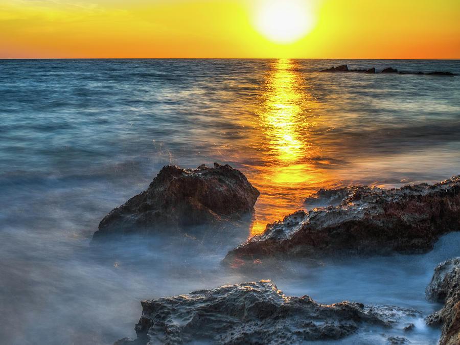 Florida Photograph - Florida Gold  by Don Miller