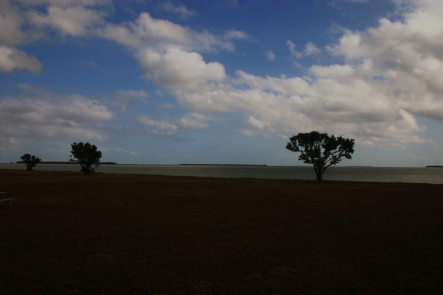 Landscape Photograph - Florida Keys by Dennis Curry
