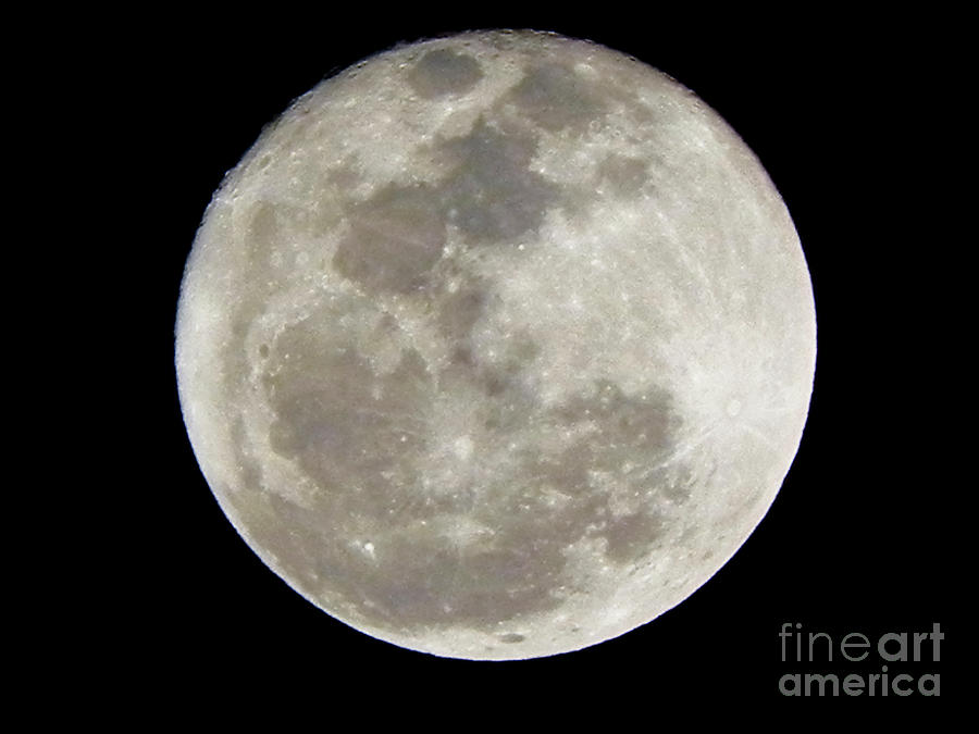 Moon Photograph - Florida Moon 2-28-2011 by Jack Norton