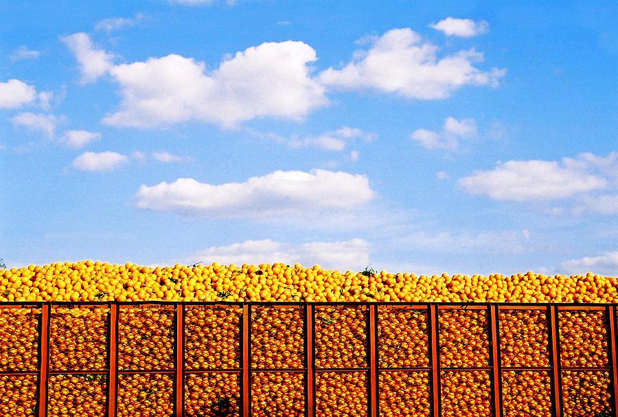 Orange Photograph - Florida Orange Juice by Justin  Dyal