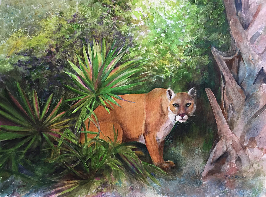 Florida Panther by Patricia Ricci