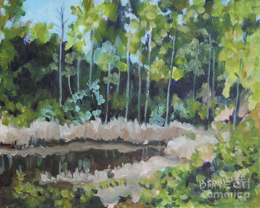 Florida  Reflections by Jan Bennicoff