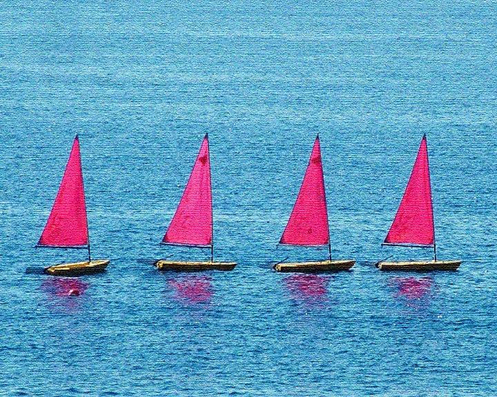 Flotilla Photograph by John Bradburn