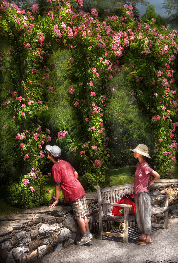 Savad Photograph - Flower - Rose - Smelling The Roses by Mike Savad