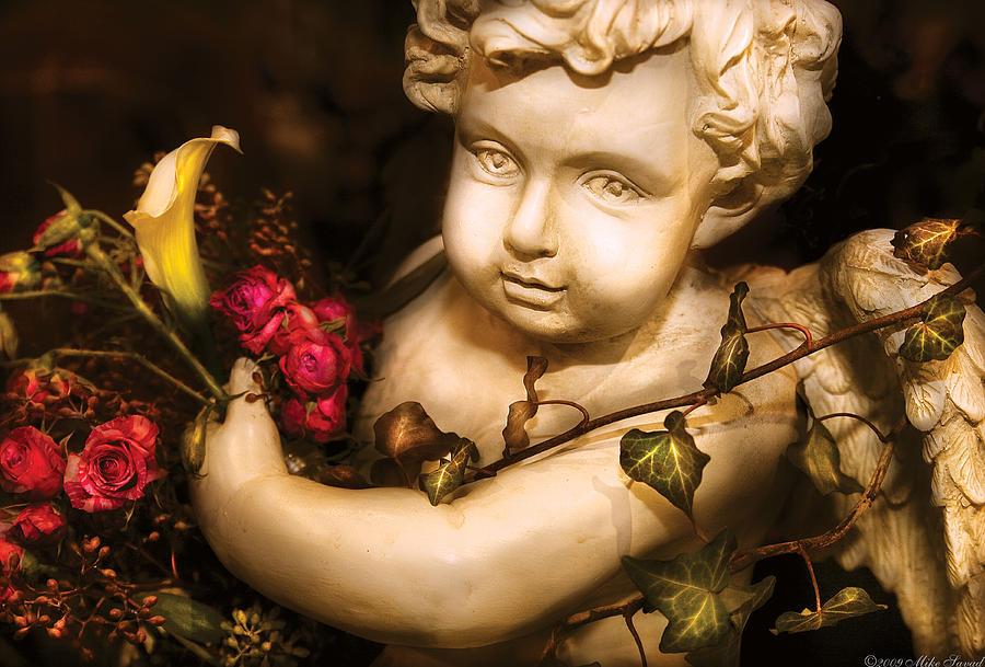 Savad Photograph - Flower - Rose - The Cherub  by Mike Savad
