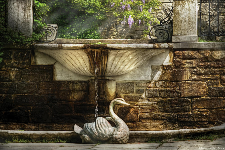 Savad Photograph - Flower - Wisteria - Fountain by Mike Savad