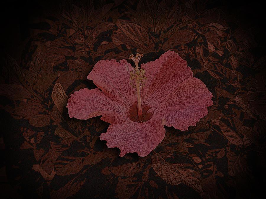 Graphic Design Digital Art - Flower by Aaron Kreinbrook