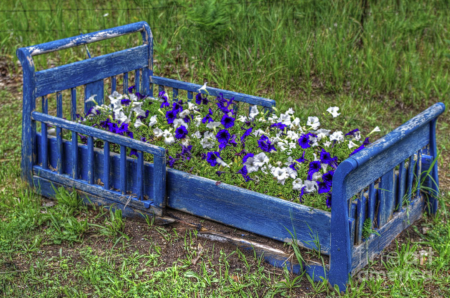 Flower Bed Blues by Randy Pollard