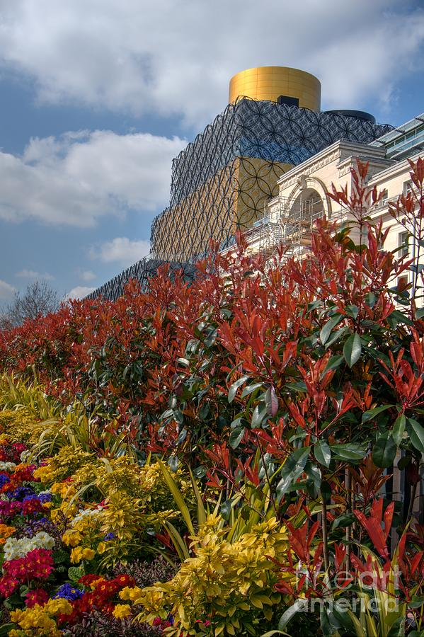 Flower Beds By The Library Photograph