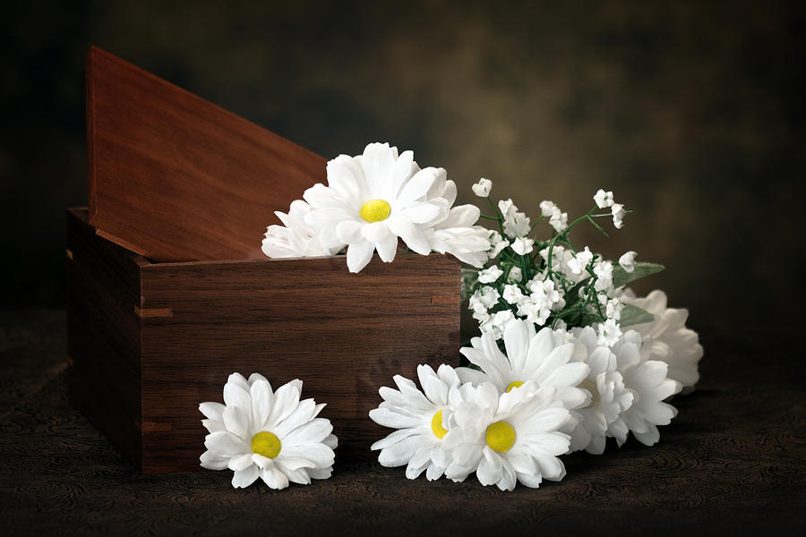 Flowers Photograph - Flower Box by Tom Mc Nemar