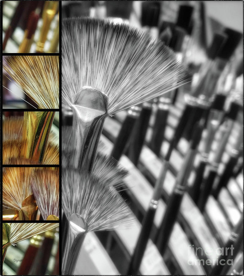 Paintbrushes Photograph - Flower Brushes  by Steven Digman