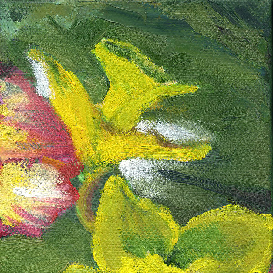 Flower Daffodil 1 by Kathleen Barnes