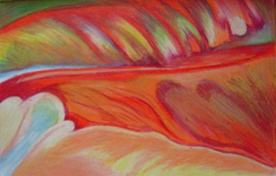 FLOWER DETAIL by FANNY DIAZ