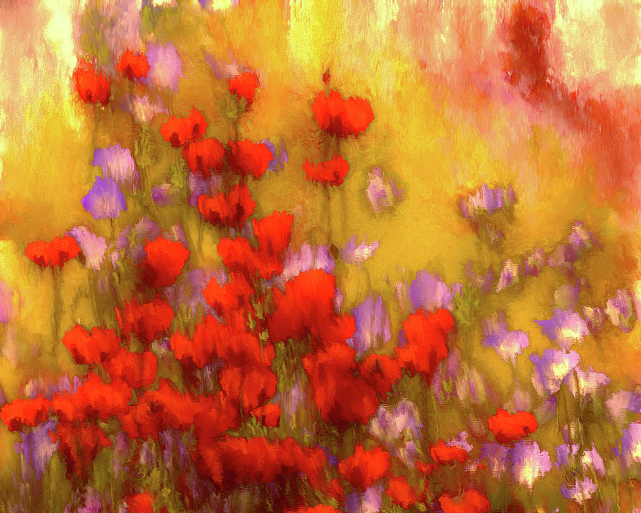 Impression Digital Art - Flower Fields Of Summer by Marci Potts