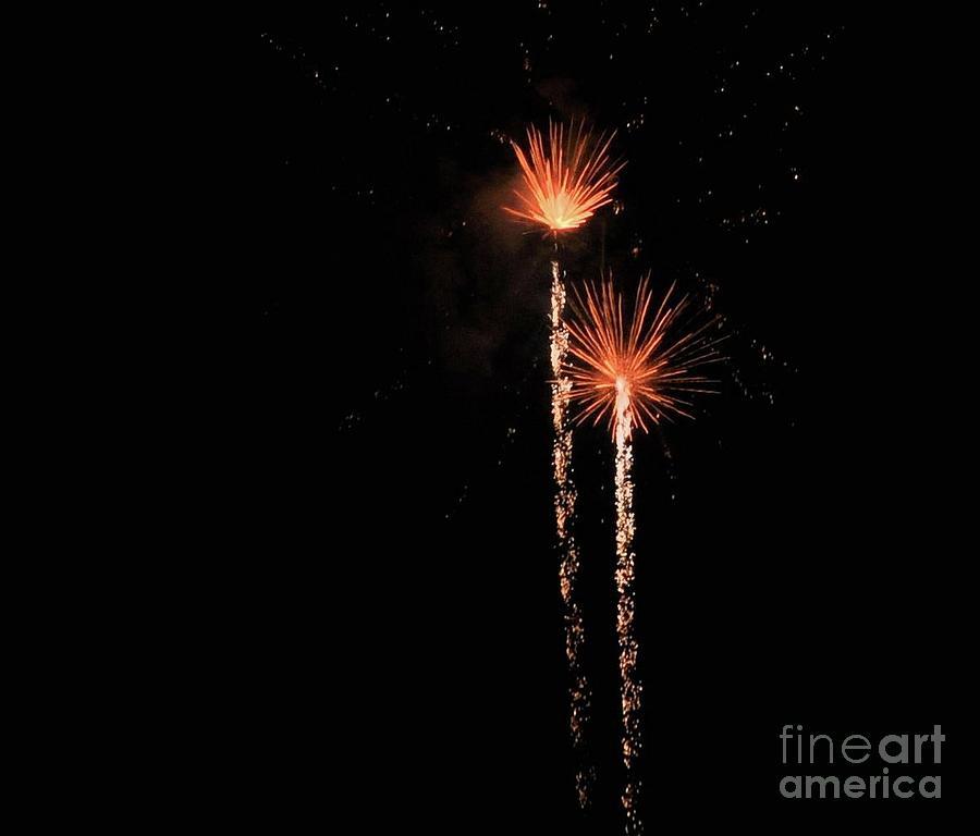 Flower Fireworks By Leslie Gilbertson