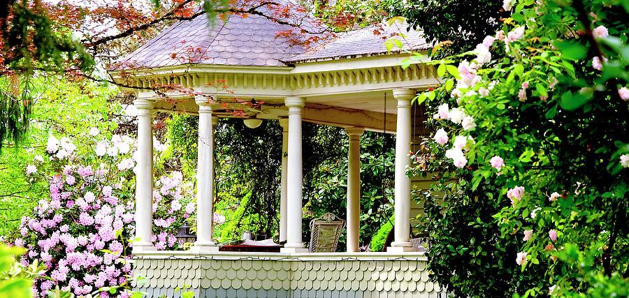Flower Garden Chair Photograph
