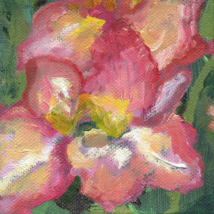 Flower Gladioli by Kathleen Barnes