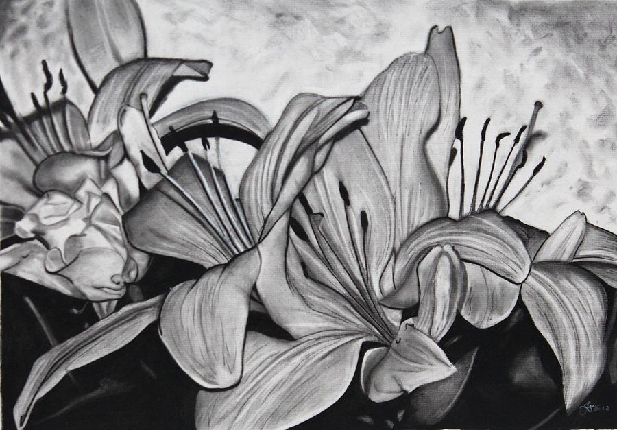 Flower Drawing By Jason Dunning