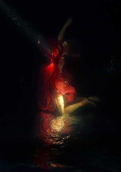 Underwater Photograph - Flower by Libor Spacek