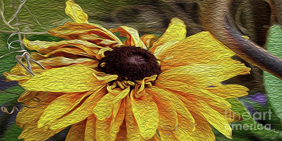 Flower Shop Sunflower Oil Photograph