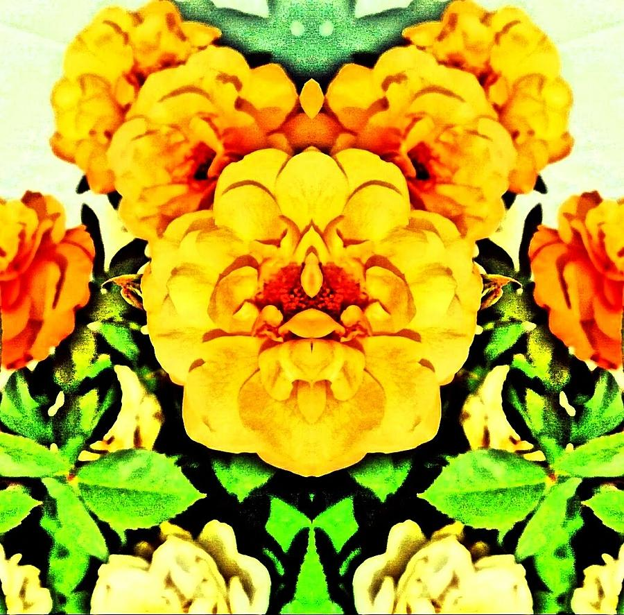 Symmetry Digital Art - Flower Teddy by Anastasia Edwards