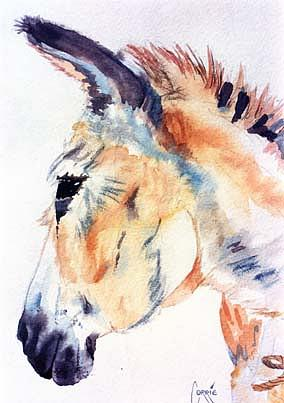 Donkey Print - Flower The Donkey by Corrie Scott