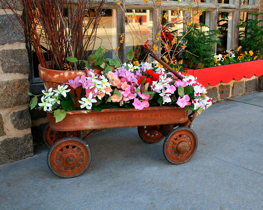 Wagon Photograph - Flower Wagon by Perry Webster