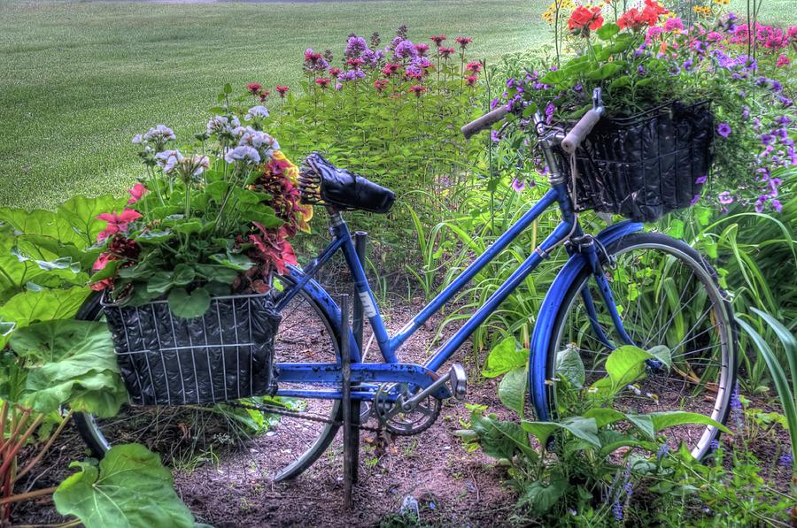 Bicycle Photograph - Flowered Bicycle by Dave Rennie