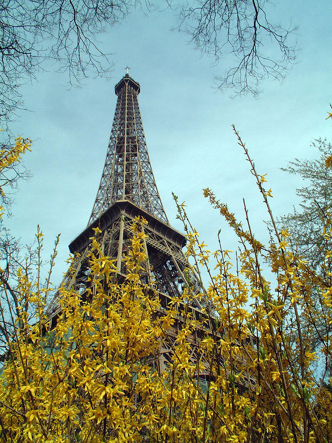 Eiffel Tower Photograph - Flowered Eiffel Tower by Charles  Ridgway
