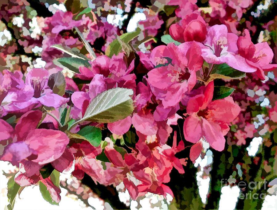 Flowering Crab Apple Tree Mixed Media By Debra Lynch