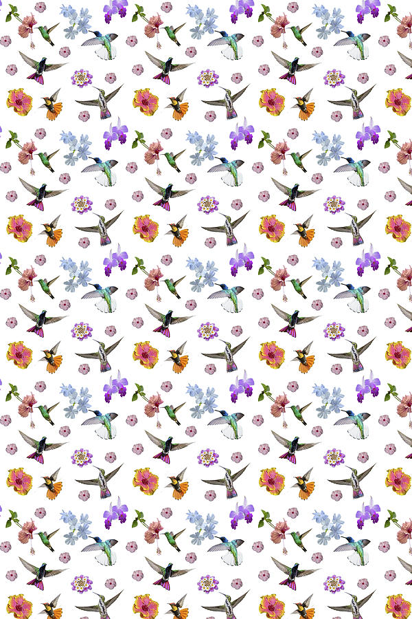 Hummingbird Digital Art - Flowers And Hummingbirds 1 by Rachel Lee Young