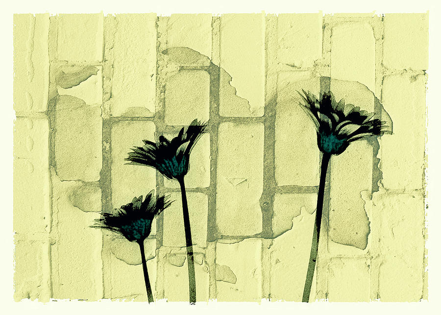 Flowers Digital Art - Flowers And The Brick Wall by Susan Stone