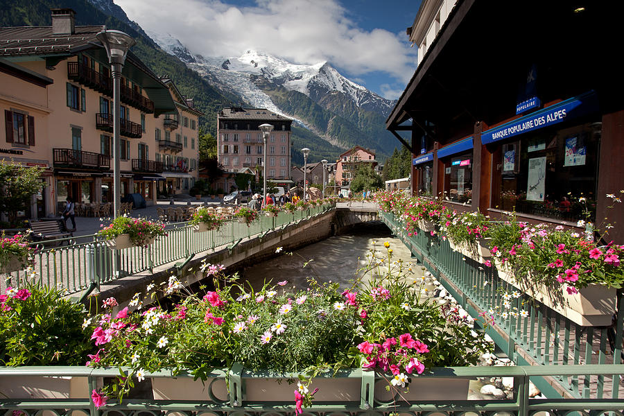 Flowers, Chamonix Photograph