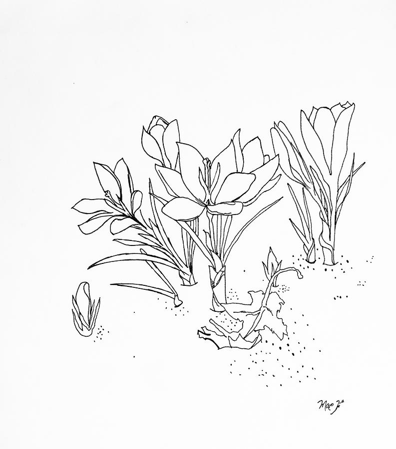 Original Drawing - Flowers by Dean Italiano