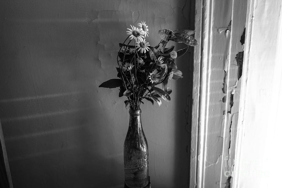 Flowers Photograph - Flowers In A Peculiar Vase by Taylor McLaurin