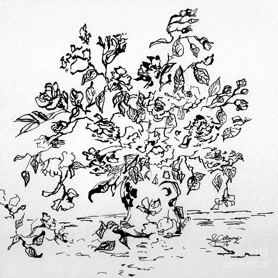 Flowers In A Vase Ink Art Drawing by Ginette Callaway