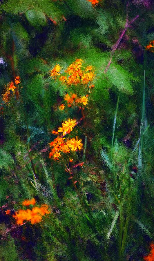 Digital Photography Digital Art - Flowers In The Woods At The Haciendia by David Lane