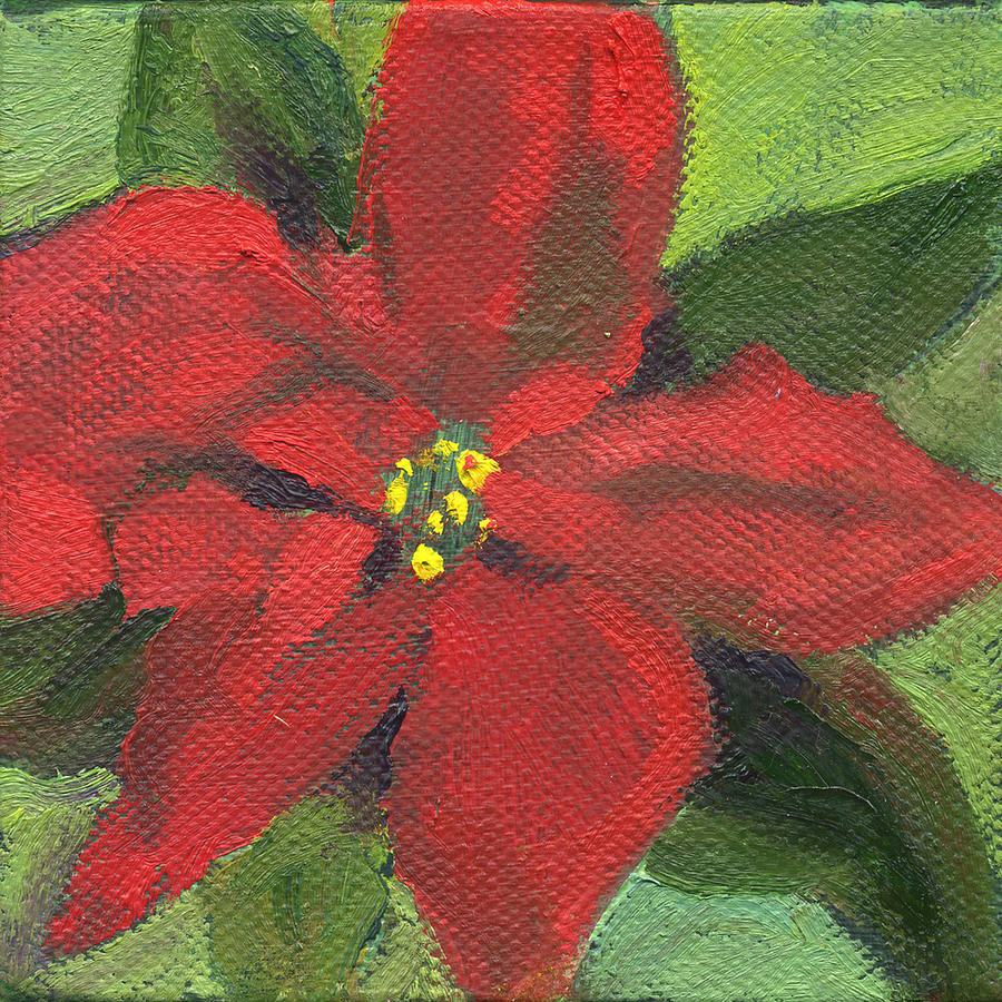 Flowers Pointsettia by Kathleen Barnes