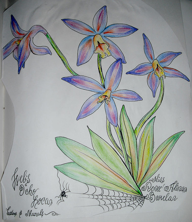 Flowers Drawing by Renee Alina Barela