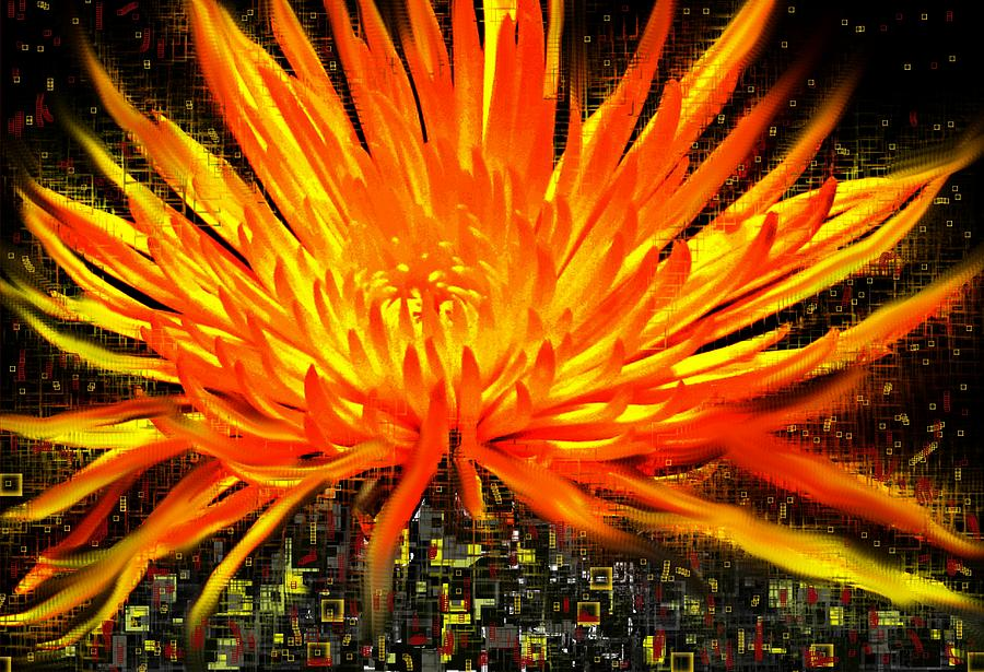 Abstract Digital Art - Flowersquared by Ian  MacDonald
