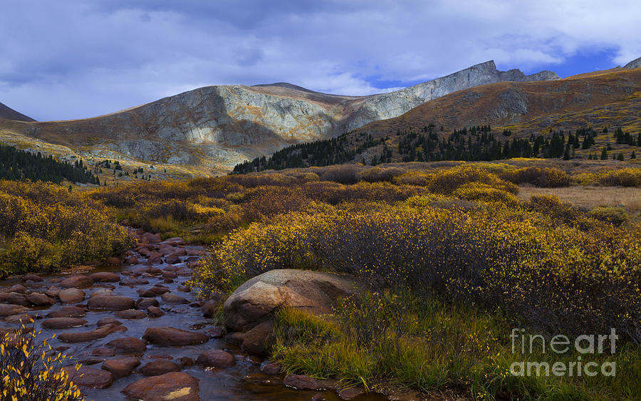 High Mountain Stream Photograph - Flowing From Bierstadt by Barbara Schultheis