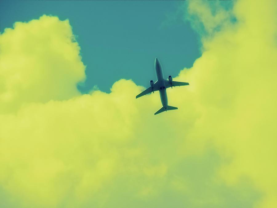 Polaroid Photograph - Fly Away Polaroid Transfer by Tony Grider