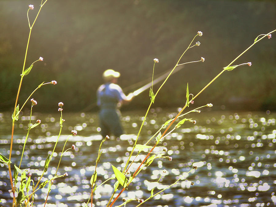 Fly Photograph - Fly Fishing by JAMART Photography