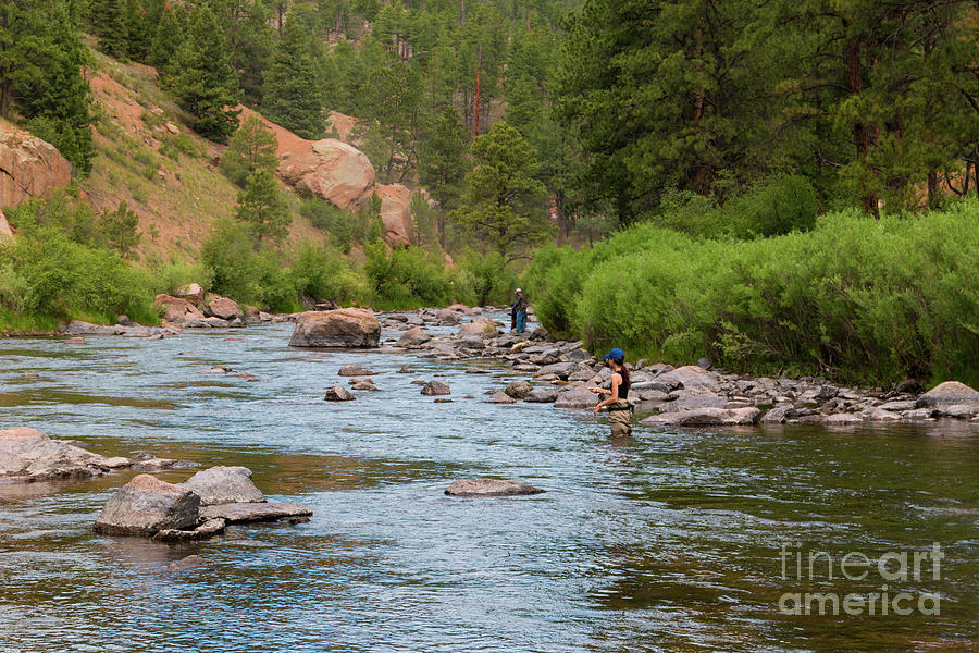 Fly Fishing On The Platte Photograph